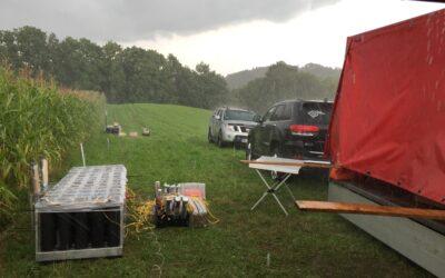 Volksfest Ebersberg 18.08.2016